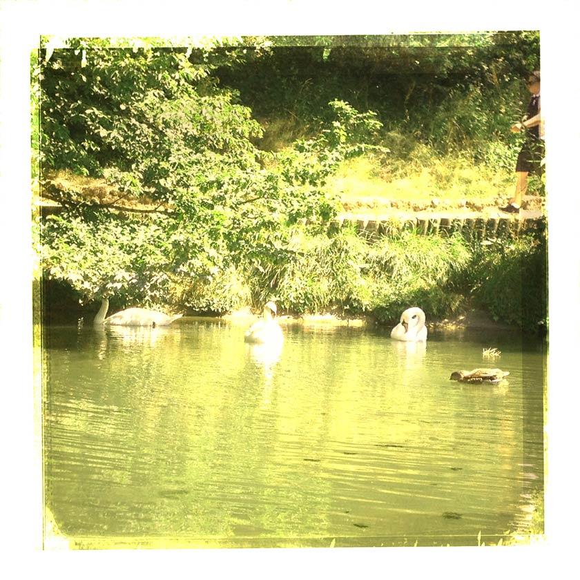 cartes postales vintage du lac de boulogne
