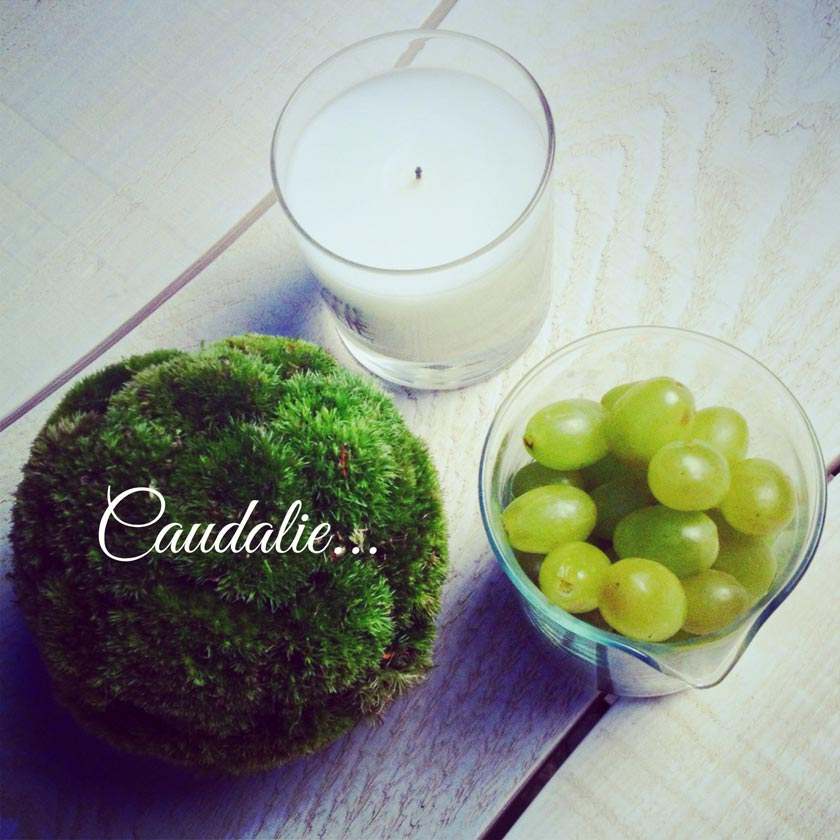 caudalie-anti-ox25