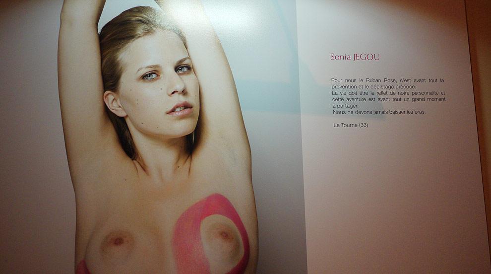 Soirée Ruban Rose 2014 au Palais Chaillot (Paris 16e)