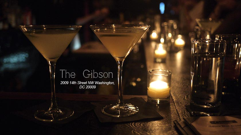 voyage-usa-washington-gibson-bar-01