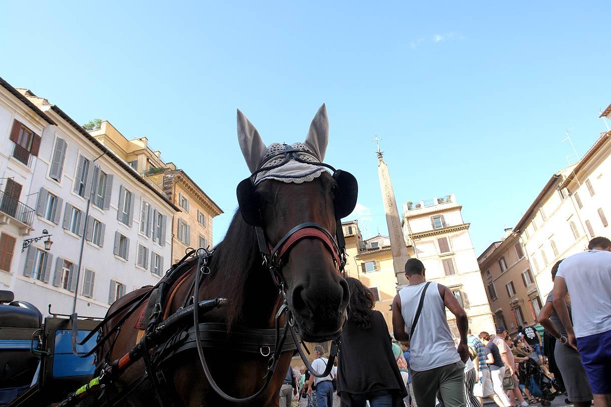 rome-italie-13