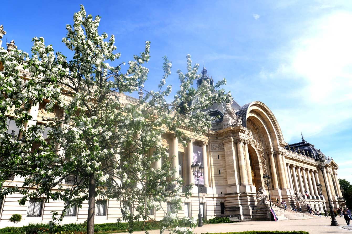 Entrée Petit Palais