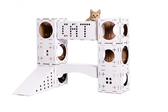 kit-blocks-cat