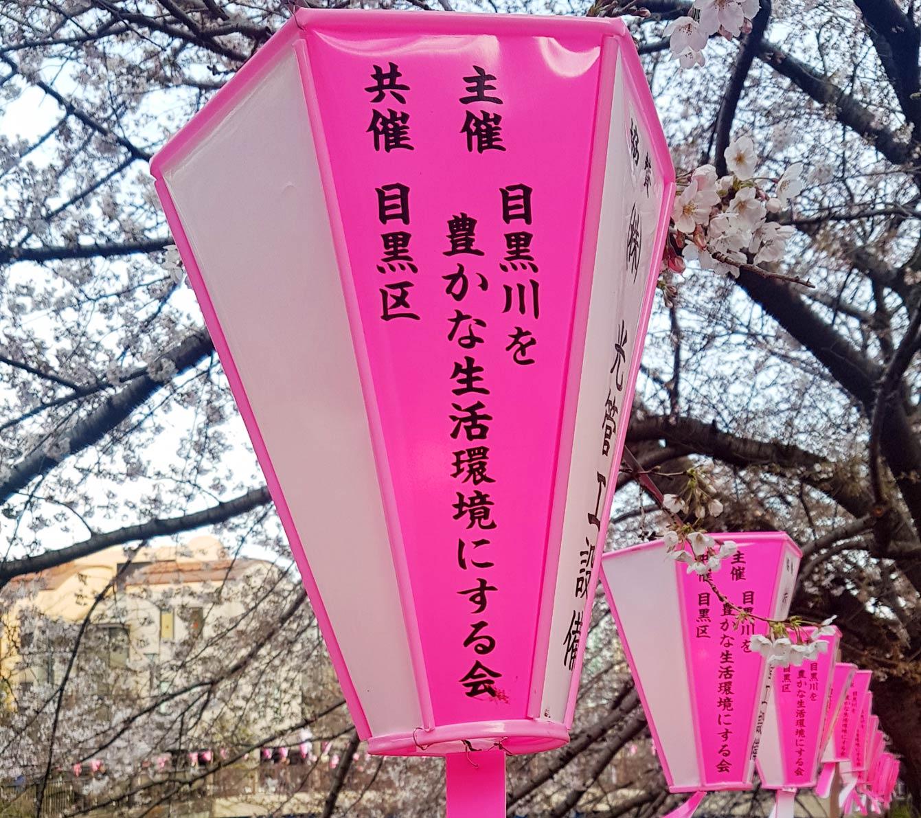 Meguro-river-park05