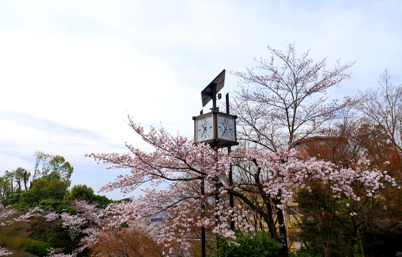 kyoto40