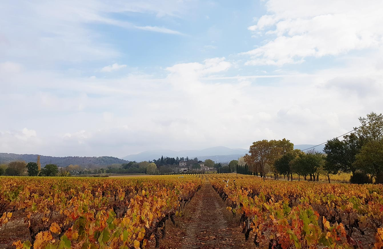 Domaine du Colombier, Ardèche