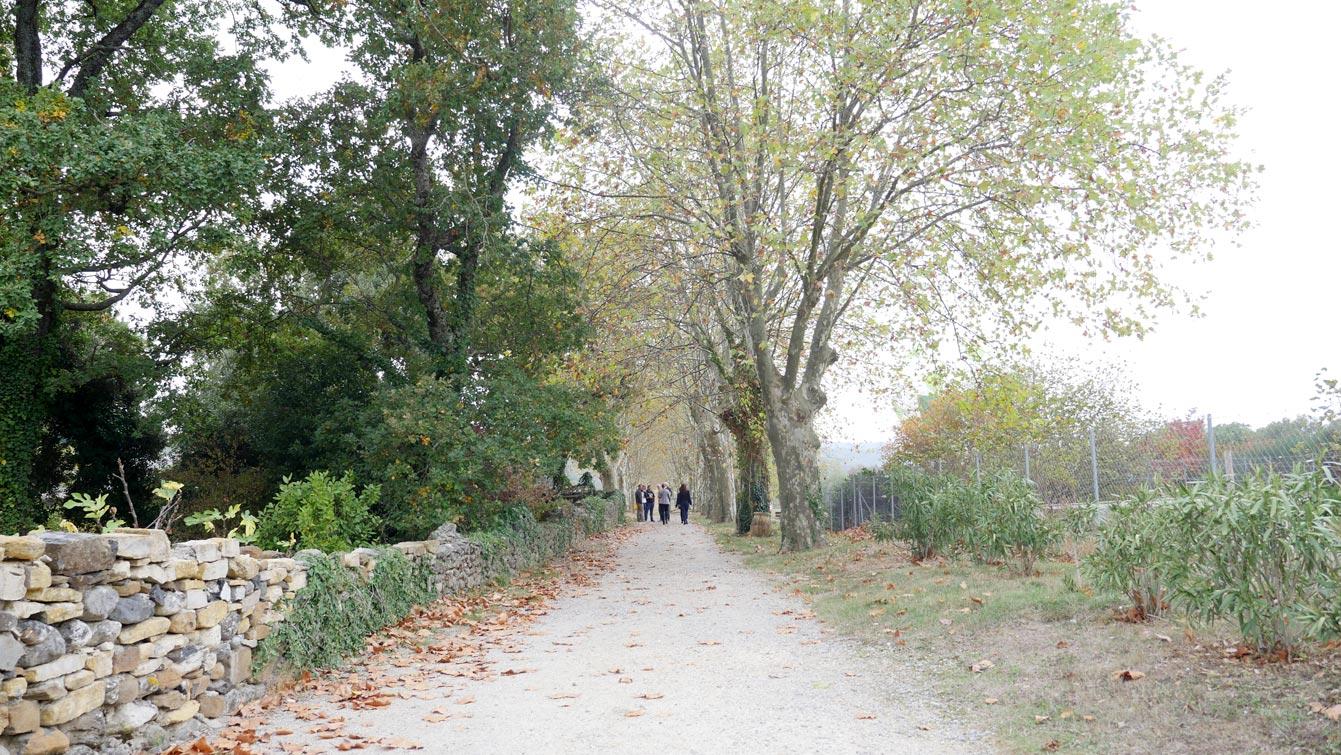 18-domaine-olivier-serres-mirabel