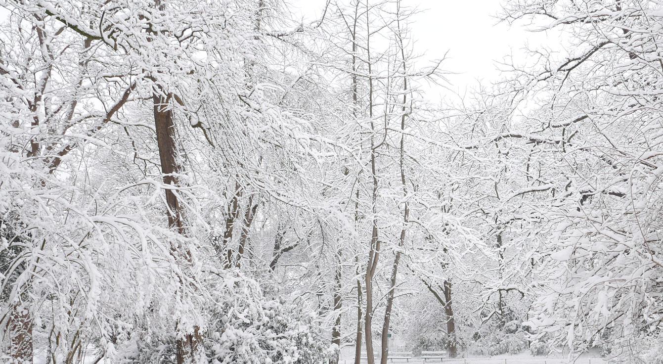buttes-chaumont-neige-01