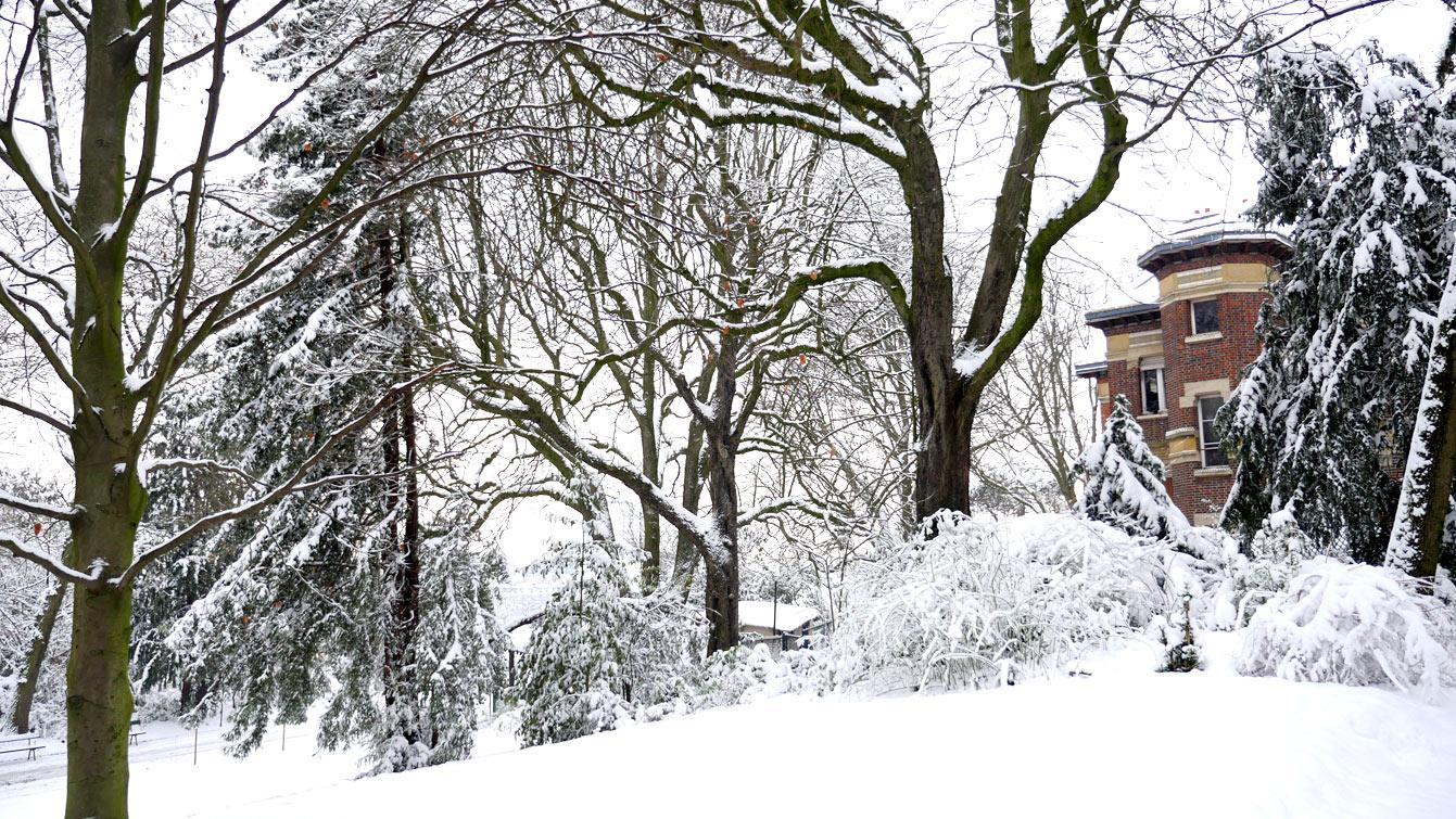 buttes-chaumont-neige-10
