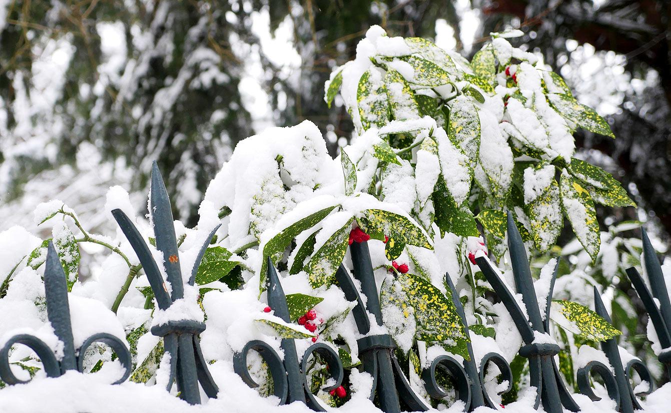 buttes-chaumont-neige-11