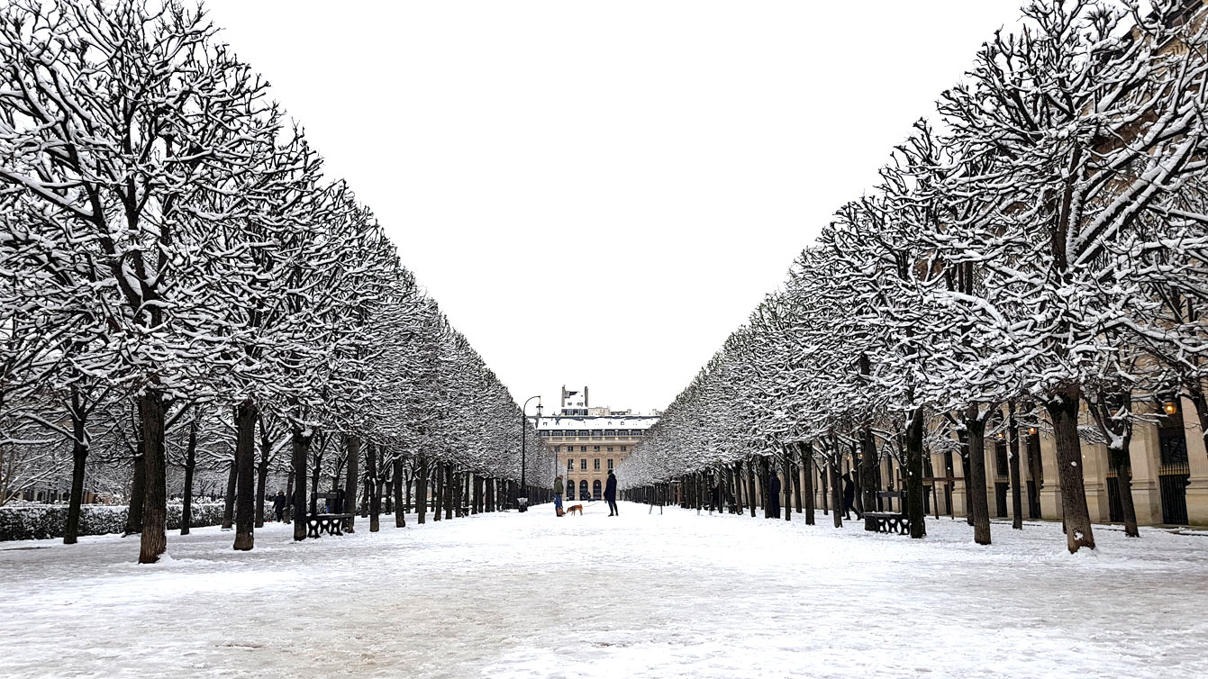 jardins-palais-royal-07