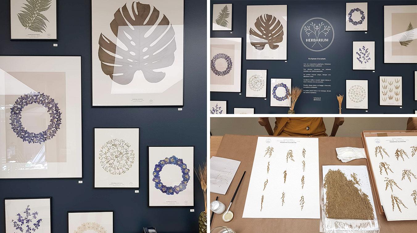Lifestyle Market- Herbarium