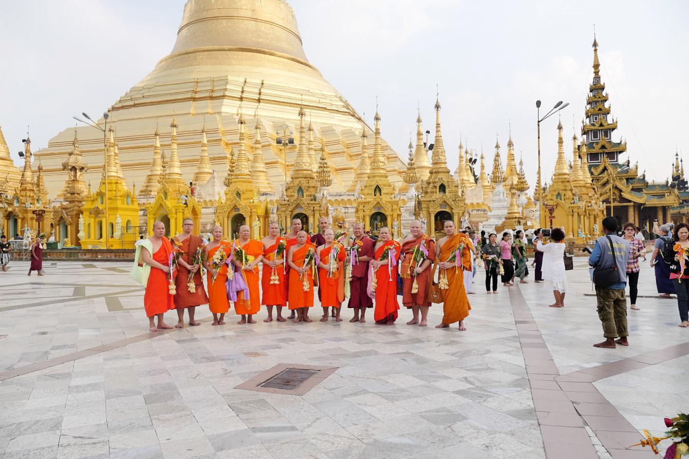 Pagode Shwedagon, Rangoun, Yagon, Birmanie, Myanmar
