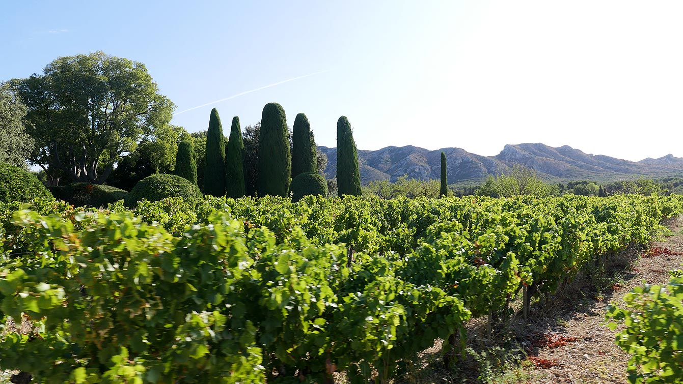 rallye des vignerons des Baux-de-Provence